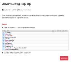 Manual SAP/ABAP para hacer debug en un Pop-up Pop Up, Manual, Textbook