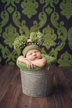 newborn prop idea