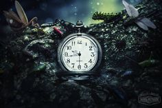 Create unusual Photo manipulation small and invisible worlds and fascinating moments of life of small inhabitants of the forest! In this tutorial, you will learn how to work with adjustment layers and Photoshop For Photographers, Photoshop Tips, Photoshop Tutorial, Lightroom, Photo Manipulation Tutorial, Digital Art Tutorial, Photo Effects, Light And Shadow, Colorful Backgrounds