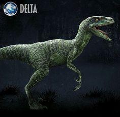 Raptor squad Delta