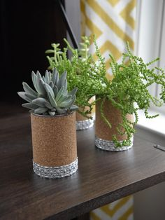 Create industrial-chic vases for succulents or ferns. Here's how: Drill holes in the bottoms of the cans, update their exteriors with rolls of cork and add decorative tin trim.