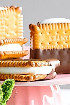 "S'mores Success guaranteed with these sweet snacks. Did you know that s'more stands for ""some more""? Chocolate Pastry, Chocolate Desserts, No Cook Desserts, Dessert Recipes, Tea Biscuits, Feel Good Food, Food Test, How Sweet Eats, High Tea"