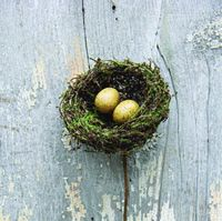 Bird-Nest-Pick-in-Natural-Coloring-4-Tall_thumbnail-1.gif
