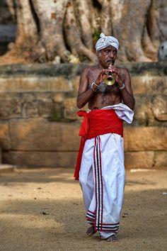 Pied Piper . Sri Lanka #VisitSriLanka #lka
