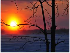 Sunset In Huron County In February - Gallery - Bonnie Sitter | pmp-art.com
