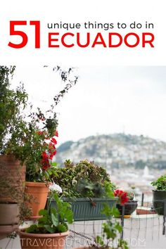 51 Unique + Fun Things to do in Ecuador - Travel Outlandish - 51 Unique + Fun Things to do in Ecuador – Travel Outlandish seems to have it all. High altitude hikes, cheap street food, adventures and unique things to do around Ecuador! South America Destinations, South America Travel, Ecuador Travel, Quito Ecuador, Philippines Travel, Mexico Travel, Spain Travel, Oh The Places You'll Go, Places To Travel