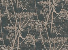 Cow Parsley (66/7048) - Cole & Son Wallpapers - A large scale all over design of cow-parsley – in beige and black background – giving a magical delicate effect.  Available in other colours – please ask for a sample for a true colour match. Paste-the-wall products.