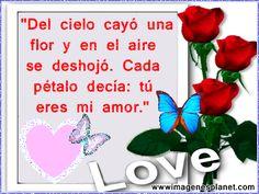 Imagen De Amor Con Rosas | Imagenes de rosas con frases de amor
