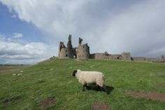 Dunstanbrough Castle- Northumberland. The ruins over look the north sea coast