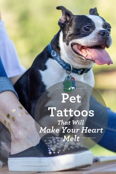 Temporary pet tattoos are a fun and meaningful way to show off our love for our pets and to pay tribute to the animals who have touched our lives. Pet Tattoos, Animal Tattoos, Temporary Tattoos, Gifts For Pet Lovers, Dog Lovers, Watermelon Baby, Sleeping Animals, Group Of Dogs, Dog Cookies