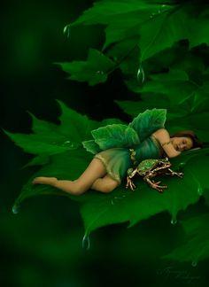 Emerald Forest Fairy ༺ß༻
