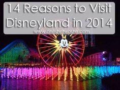14 Reasons to Visit Disneyland in 2014 www.oneshetwoshe.com