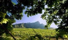 Franschhoek-Zuid-Afrika