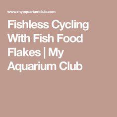 Fishless Cycling With Fish Food Flakes | My Aquarium Club
