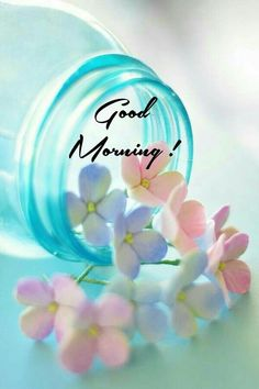 Good Morning Flowers Quotes, Sweet Good Morning Images, Good Night Friends Images, Beautiful Morning Messages, Cute Good Morning Quotes, Good Morning Inspiration, Good Morning Post, Good Morning Photos, Happy Morning
