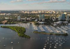 Want great ideas about Florida Real Estate? Go to this fantastic website! Coconut Grove, Real Estate News, Real Estate Marketing, South Florida, Statistics, Dream Homes, Luxury Homes, Miami, The Past