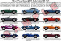 AC Ace Cobra Shelby Aceca model chart poster 289 427 Super Snake S/C Dragonsnake