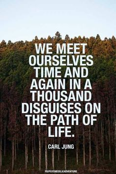 We meet ourselves time and again in a thousand disguises on the path of life. - Carl Jung