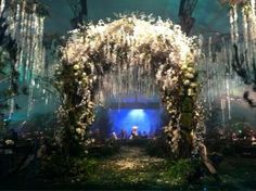 Breaking Dawn: Wedding archway draped in Wisteria (Part 1 premier party) this is absolutely beautiful but probably more expensive than its worth