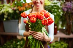 Send romantic flower arrangements, red roses, and lilies for valentine's day delivery in Marin County. Order a bouquet online today for a hand-delivery.