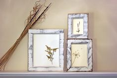 DIY framed pressed flowers