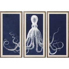 Lord Bodner Triptych by Natural Curiosities