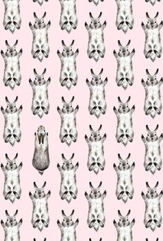 Rabbits in a pattern
