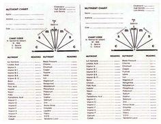 Vitamin / Nutrient Chart