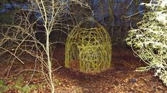 Willow Structures