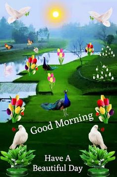 Good Morning Animals, Good Morning Gif Images, Good Morning Flowers Pictures, Inspirational Good Morning Messages, Good Morning Beautiful Flowers, Good Morning Beautiful Quotes, Good Night Gif, Morning Pictures, Beautiful Scenery