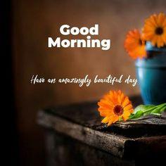 Good Morning Beautiful People, Romantic Good Night, Good Morning Flowers, Beautiful Day, Good Morning Picture, Good Morning Good Night, Morning Pictures, Good Morning Images, Good Morning Greetings