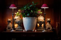Tall elegant coolie lamps - love the styling!