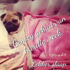 Goeie Nag, Afrikaans, Cute Quotes, Good Night, Sayings, Friends, Pretty Quotes, Amigos, Cute Qoutes