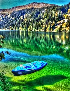 Lake Bled, Radovljica, Slovenia just how clear is that water? All Nature, Science Nature, Beautiful World, Beautiful Places, Amazing Places, Beautiful Boys, Places To Travel, Places To See, Bohinj