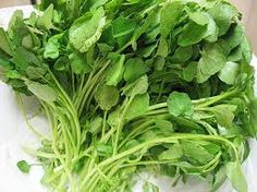 Watercress: One of the oldest known leaf vegetables consumed by humans, high in iron, calcium, iodine, and folic acid, in addition to vitamins A and C.