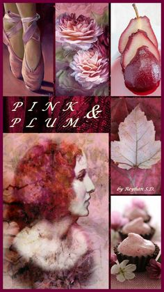 '' Pink & Plum '' by Reyhan S.D.