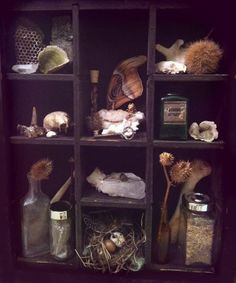witchy cabinet of curiosities
