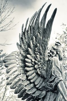 ☫ Angelic ☫ winged cemetery angels and zen statuary - Cemetery Angels, Cemetery Statues, Cemetery Art, Angels Among Us, Angels And Demons, Statue Ange, Sculpture Art, Sculptures, Art Du Monde