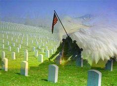 memorial day 2015 usmc 96