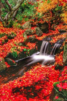Allah, Waterfall, Outdoor, Falling Waters, You Are Awesome, Scenery, Fantasy, Outdoors, Waterfalls