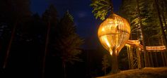 Another unique restaurant concept. It is called the yellow Tree-house Restaurant, in New Zealand. The place is shaped like a birdcage. I personally would definitely wanna try that. Outdoor Restaurant, House Restaurant, Magical Tree, Cool Tree Houses, Tiny Houses, Yellow Tree, Unique Restaurants, Unique Trees, Tree Tops