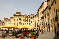 Lucca Italy walled city......probably the all time favorite place I've been so far!  I could live there!