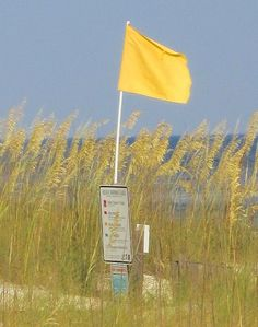 Perdido Key - Yellow Flag the day we were there.