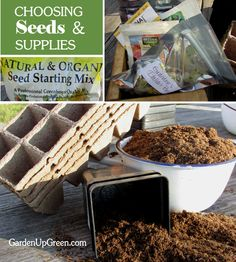 Do you have everything you need to get your seeds started for Spring? January is the perfect month to gather your supplies - Get these Helpful Tips and ideas.