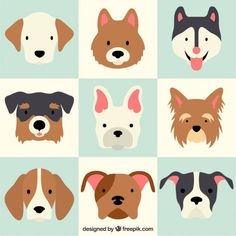 Ideas For Dogs Love Illustration Character Design Art And Illustration, Character Illustration, Cute Dogs Breeds, Dog Breeds, Logo Animal, Dog Vector, Vector Art, Dog Art, Pet Shop
