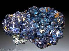 Bornite from Eagle mine, Gilman, Eagle Co., Colorado, United States - PD32020