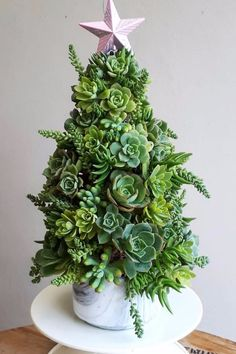 19 Succulent Christmas Trees So Cute, You Just Might Ditch Y.- 19 Succulent Christmas Trees So Cute, You Just Might Ditch Your Balsam Fir 14 Succulent Christmas Trees So Cute, You Just Might Ditch Your Balsam Fir - Pretty Christmas Trees, Xmas Tree, Winter Christmas, Christmas Home, Christmas Lights, Christmas Wreaths, Christmas Crafts, Christmas Decorations, Cactus Christmas Trees