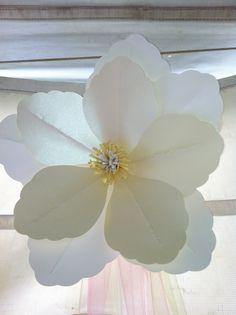 giant paper magnolia
