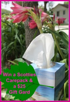 Share Your Soft Summer Moments & #Win A Scotties Facial Tissue Prize Pack + $25 Amazon Gift Card - A Frugality Is Free #Giveaway