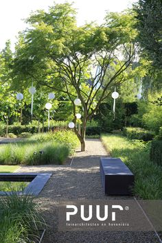 Narrow Garden, Side Garden, Modern Landscaping, Garden Landscaping, Backyard Pavilion, Pond Water Features, Forest View, Garden Architecture, Contemporary Garden
